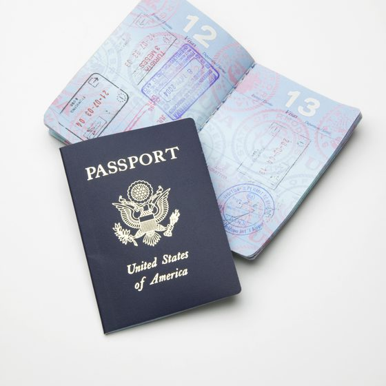 IRS Rolls out Passport Certification Program - Michael Smeriglio