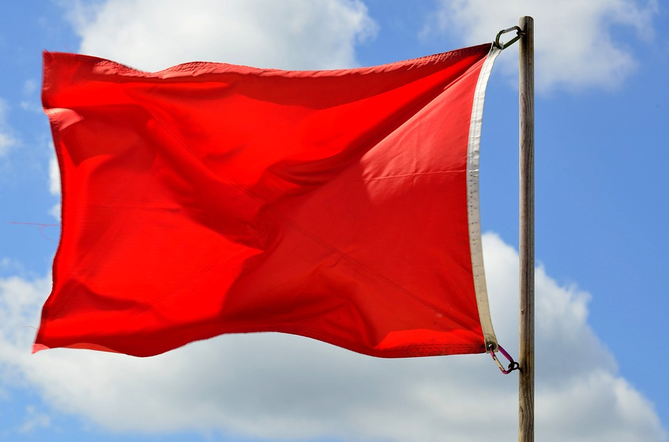 Red Flags That Could Trigger An IRS Tax Audit - Michael Smerigli